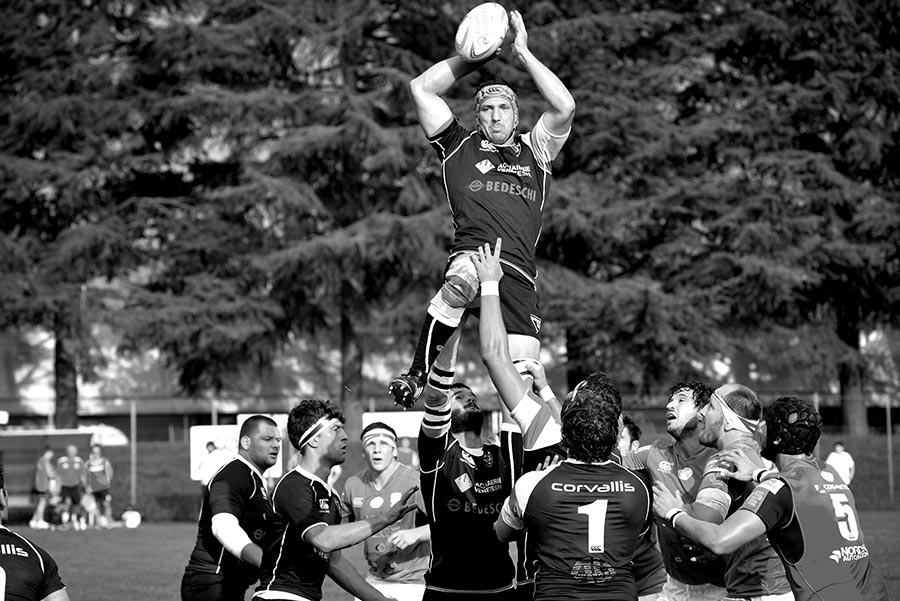 petrarca_rugby